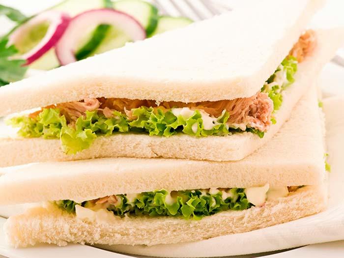sandwich vegetal